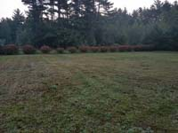 Expanse of lawn that will be the site of a basketball court featuring Celtics logo, with fire pit, patio, and light for night play, in Londonderry, NH.