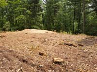 View after trees have been cut to make way for large emerald green and titanium backyard basketball court in Bolton, MA.