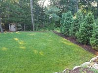 Lawn that was in place before building residential basketball court in shades of blue in Lexington, MA.